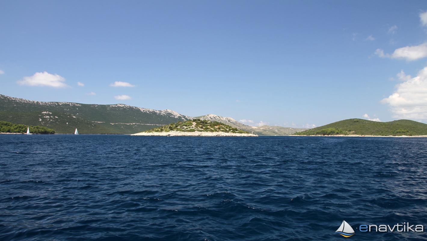 Slika Maslinovac 0