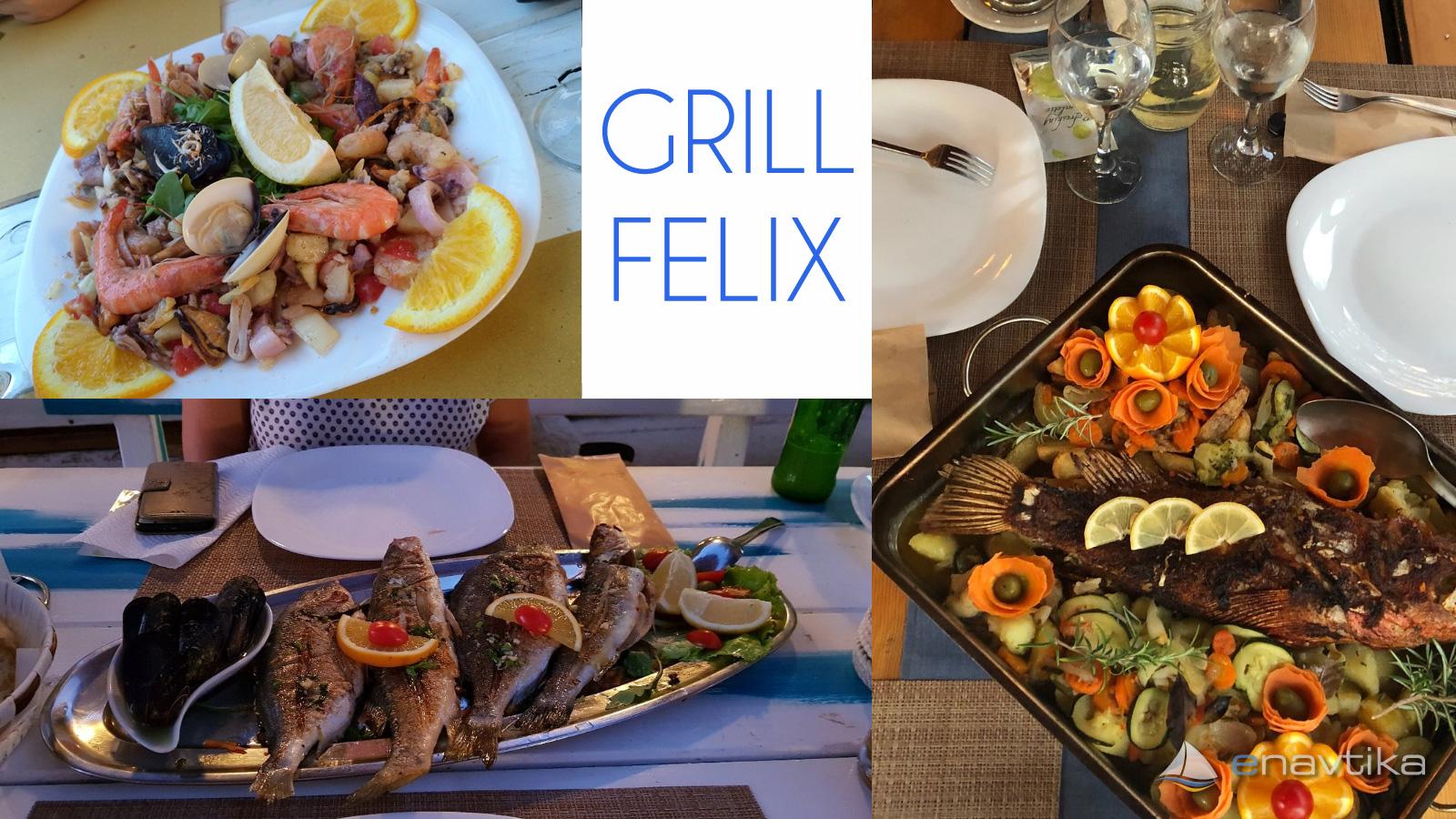 Slika Grill Felix 7